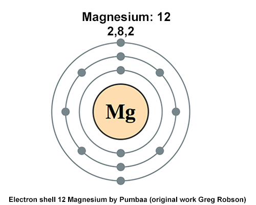 https://magnesiumandhealth.com