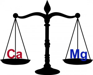 Mg Ca balance