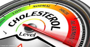 Mercola Cholesterol