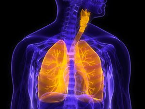 bronchial spasms