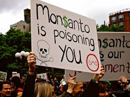 Monsanto and Cancer