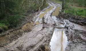 muddy lanes