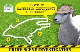 grass tetany death
