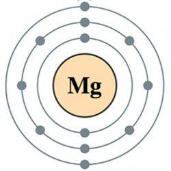 magnesiumandhealth.com